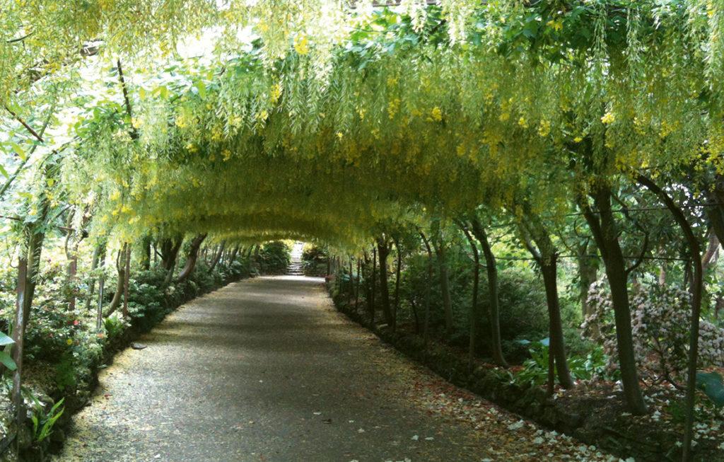 9-bodant-gardens wales