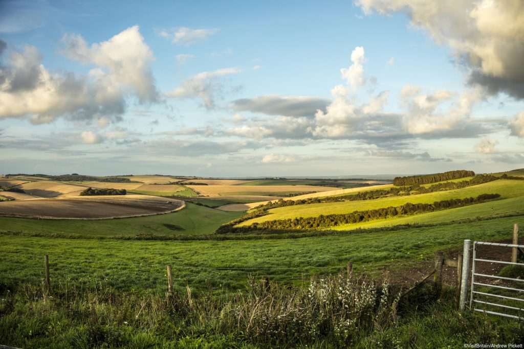 View across the landscape in the South Downs national park (VisitBritain)