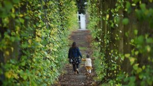 Wentworth Castle Gardens - Lady Lucy's walk
